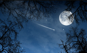 Stars and moon before the dark reigns