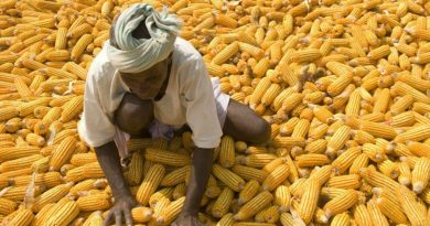 myths-on-food-in-africa_hero1.jpg__1500x670_q85_crop_subsampling-2
