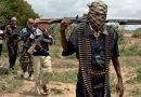 Nigerian President says Boko Haram 'll soon be history