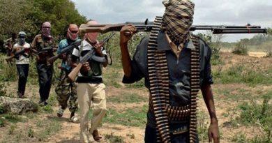 Boko-Haram-620x350