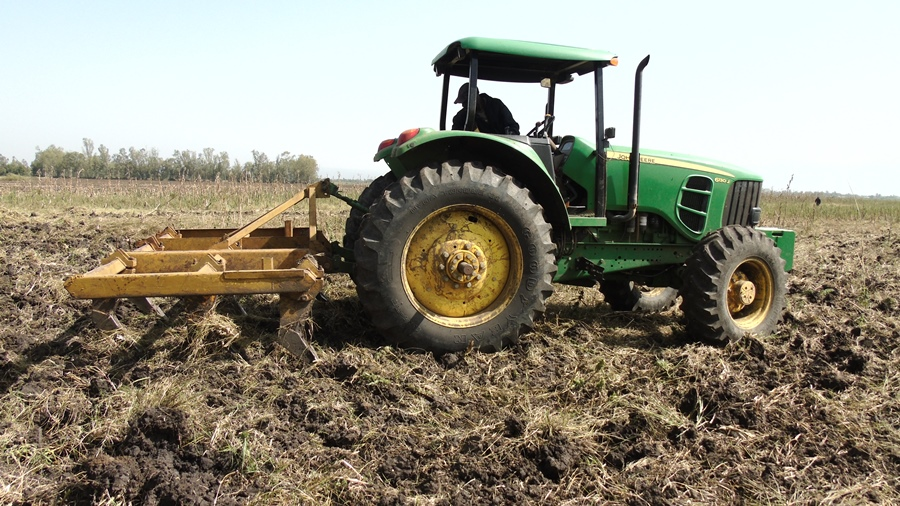 TingA tractor preparing Sorghum farm in Kisumu